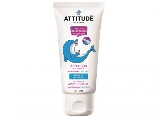 Attitude After Sun