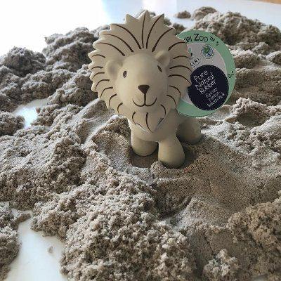 Tikiri leeuw in zand