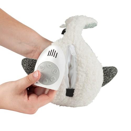 Moby de walvis onderkant